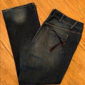 Lane Bryant distinctly boot cut stretch jeans EUC